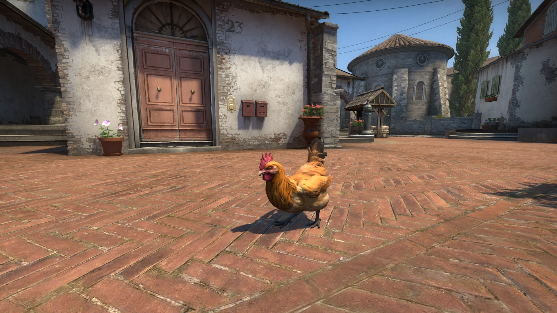 cs go chickens
